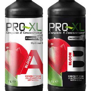 Bloom A+B  1L  PRO-XL