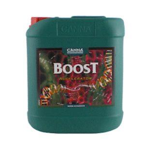 Boost Acelerator 5L  Canna