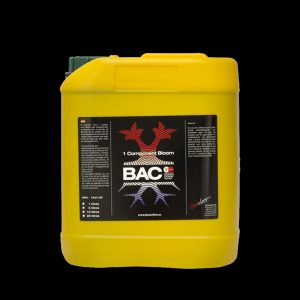 F1 Extreme Booster  5L  BAC