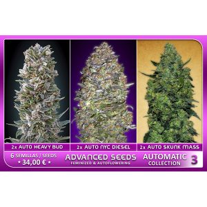 Automatic Collection #3 – Advanced Seeds
