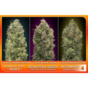 Automatic Collection #4 – Advanced Seeds