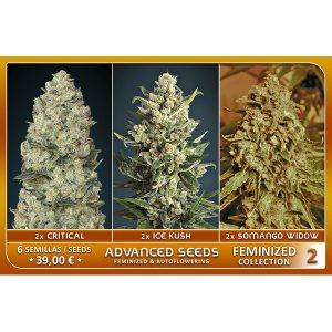 Female Collection #2 – Advanced Seeds