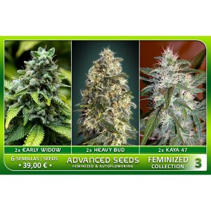 Female Collection #3 – Advanced Seeds