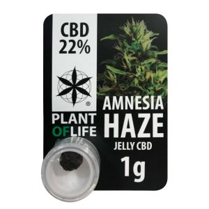 CBD Polen Plant of Life 22% Jelly Amnesia